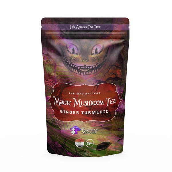 Psilocybin Ginger Turmeric Tea | 1000MG