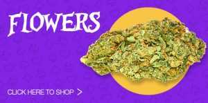 Click Here To Shop Flowers
