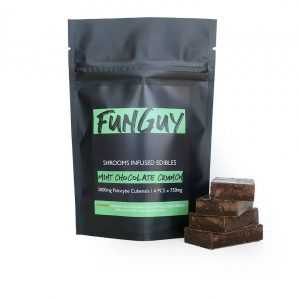 FunGuy – Mint Chocolate Crunch 3000mg