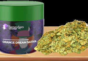 ORANGE DREAM Sativa (AAA)