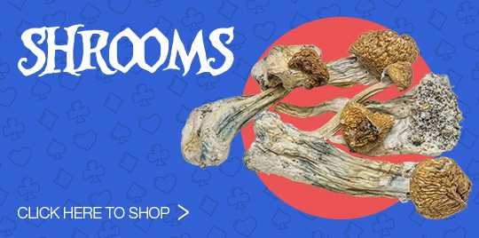 Click Here To Shop Shrooms