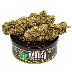 Rockstar OG Tuna Can| Hybrid | Medusa Extracts